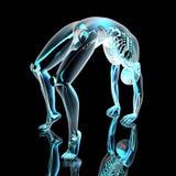 Yoga - Urdhva Dhanurasana Royalty Free Stock Photography