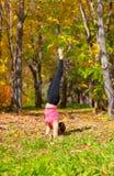 Yoga urdhva mukha pinch mayurasana pose. Woman exercises in the autumn forest yoga pinch mayurasana pose Royalty Free Stock Photography