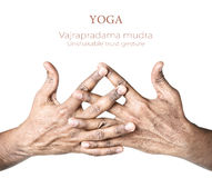 Yoga vajrapradama mudra Royalty Free Stock Photo