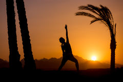 Yoga Viparita Virabhadrasana. Silhouette of young woman practicing fitness, yoga or pilates at sunset in beautiful location with mountains and palm trees, doing royalty free stock image