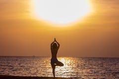 Yoga vriksasana pose Royalty Free Stock Image