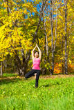 Yoga Vrikshasana Tree Pose Stock Images
