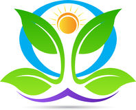 Yoga for wellness logo. A vector drawing represents yoga for wellness logo design royalty free illustration
