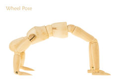 Yoga wheel pose Stock Photography