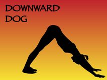 Yoga Woman Downward Dog Pose Royalty Free Stock Image