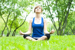 Yoga woman on green grass. Young woman is engaged in yoga, in summer forest on a green grass Stock Image