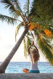 Yoga woman under palm Royalty Free Stock Images
