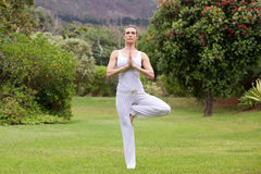 Yoga woman standing on one leg in nature Royalty Free Stock Photo