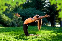 Yoga. Young woman practicing yoga or dancing or stretching in nature at park. Health lifestyle concept royalty free stock photos