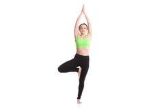 Yogabaumhaltung Lizenzfreies Stockfoto