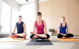 Yogagrupp royaltyfria bilder