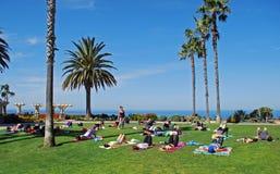 Yogagrupp i skattön parkerar nära montagesemesterortLaguna Beach, Kalifornien Royaltyfria Bilder