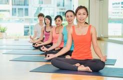Yogagrupp i studiorum, grupp människor som gör lotusblomma, poserar med Royaltyfria Bilder