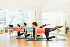 Yogagrupp som gör jämviktskatten, poserar med musslan kopplar av sinnesrörelse, Medita Royaltyfria Bilder