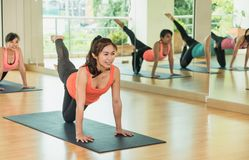 Yogagrupp som gör jämviktskatten, poserar med musslan kopplar av sinnesrörelse, Medita Royaltyfri Fotografi