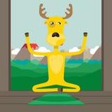 Yogaklasse Royalty-vrije Stock Fotografie