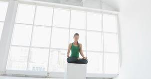 Yogaklasse von den Frauen, die gesunden Lebensstil im Eignungsstudio ausüben Geeignete Frauen, die Yoga in der Eignungshalle tun stock video footage