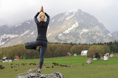 Yogakvinnan som gör trädet, poserar Meditation- och jämviktsövning i härligt naturberglandskap Fotografering för Bildbyråer