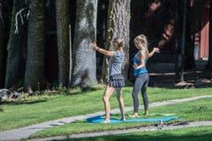 Yogameisjes in het park stock foto's