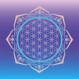 Yogastudiologo, blomma av liv som inramas med den runda mandalaen, sakrala geometrisymboler och beståndsdelar för alkemi, andligh Arkivbilder