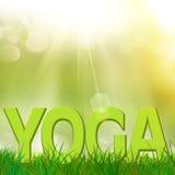 Yogatext in einer Rasenfläche Stockfotos