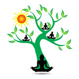 Yogaträd Arkivfoton