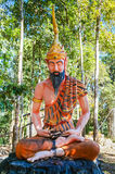Yogayogin som mediterar med det fulla skägget och tigern, flår Arkivbilder