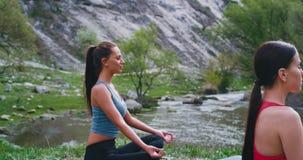 Yogazeit an den Naturdamen haben Meditationszeit zusammen auf dem Mattengefühl, das in einem schönen entspannt wird und konzentri