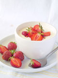 yoghurt royaltyfri foto