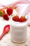 Yoghurt Royalty Free Stock Photos