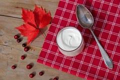 yoghurt Royalty-vrije Stock Afbeeldingen