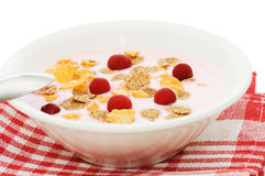 Yoghurt with berries on white background Royalty Free Stock Photography