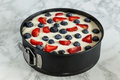 Yoghurt cake with berries. In metal shape stock photos