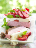 Yoghurt cheesecake Stock Image