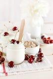 Yoghurt with cherry Stock Image