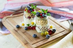 Yoghurt with chia seeds, oatmeal and fresh fruits. Yoghurt & chia seeds pudding with oatmeal, fresh fruits blueberry, red currant & gooseberry, edible flowers royalty free stock photography