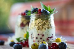 Yoghurt with chia seeds, oatmeal and fresh fruits royalty free stock image