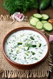 Yoghurt cold soup Royalty Free Stock Photos