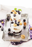 Yoghurt dessert with blueberries stock image