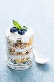Yoghurt Dessert with Cereals. Layered dessert with yoghurt, cereals, blueberry, mint and white spoon royalty free stock photography
