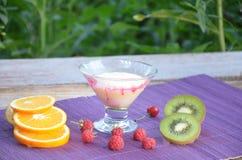 Yoghurt eller pudding med hallon och orangutang, kiwi på en purpurfärgad servett på en bakgrund av lövverk och sund smoothi arkivbilder