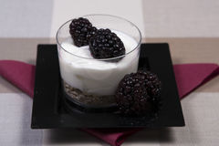 Yoghurt and fruit dessert. An individual yoghurt and fruit dessert Royalty Free Stock Photos