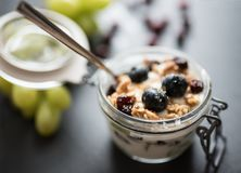 Yoghurt with grapes, muesli crumble and cranberries in jar. Yoghurt with grapes, muesli crumble and cranberries in preserving jar royalty free stock photography