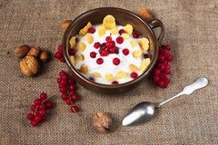 Yoghurt, havreflingor, röd vinbär och muttrar på lantlig bakgrund royaltyfri bild
