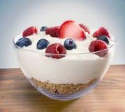 Yoghurt i bunke på trä Arkivfoto
