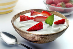 Yoghurt i bunke på trä Royaltyfria Foton