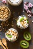 Yoghurt-, kiwi- och GranolaParfait Arkivbild