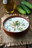 Yoghurt koude soep Stock Foto's