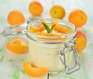 Yoghurt med aprikors royaltyfri bild