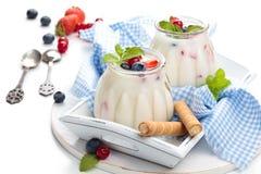Yoghurt med bär Arkivbild